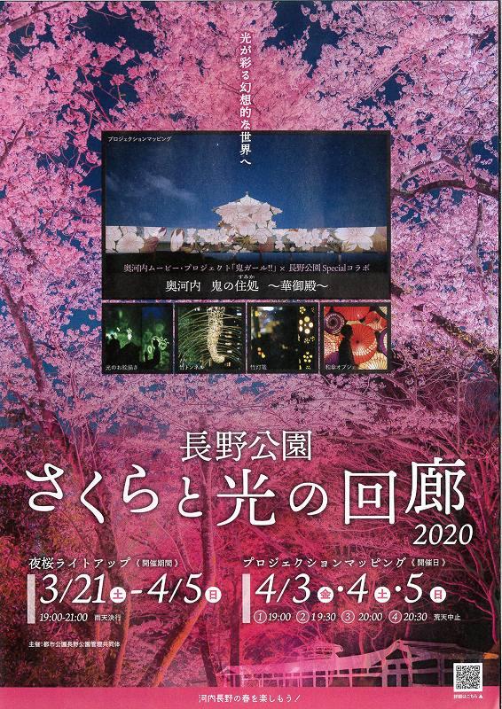 長野公園桜イベント.jpg