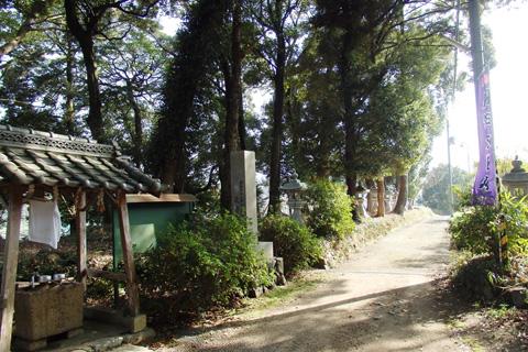 2015-3-17aogahara05-2.jpg