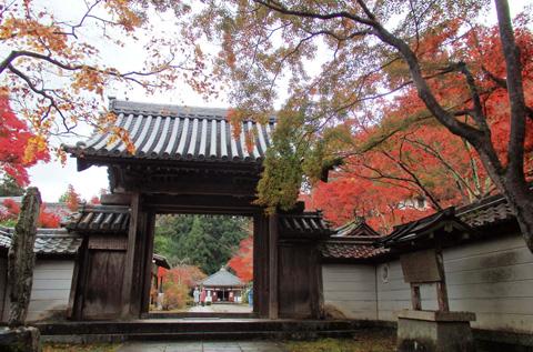 2015-11-10enmeiji09-2.jpg