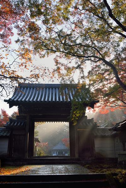 kawachinaganoshoukoukai02.jpg