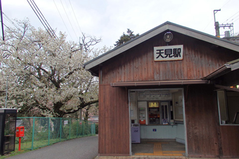 2015-4-9amami01-2.jpg