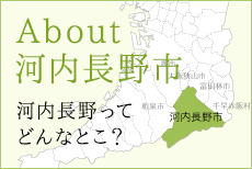 About 河内長野市