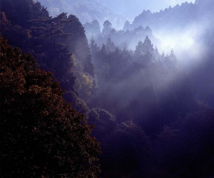 富士フイルム賞 「秋から冬へ」滝畑