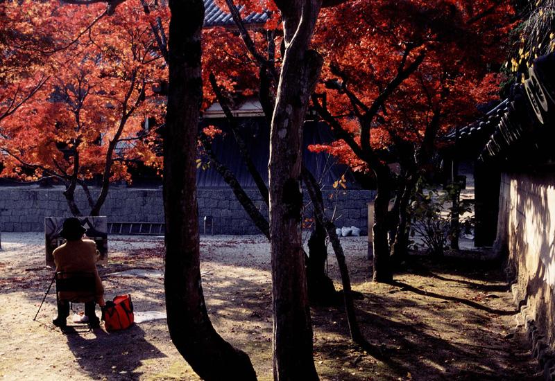 大阪観光コンベンション協会長賞 「秋とのふれあい」天野山金剛寺