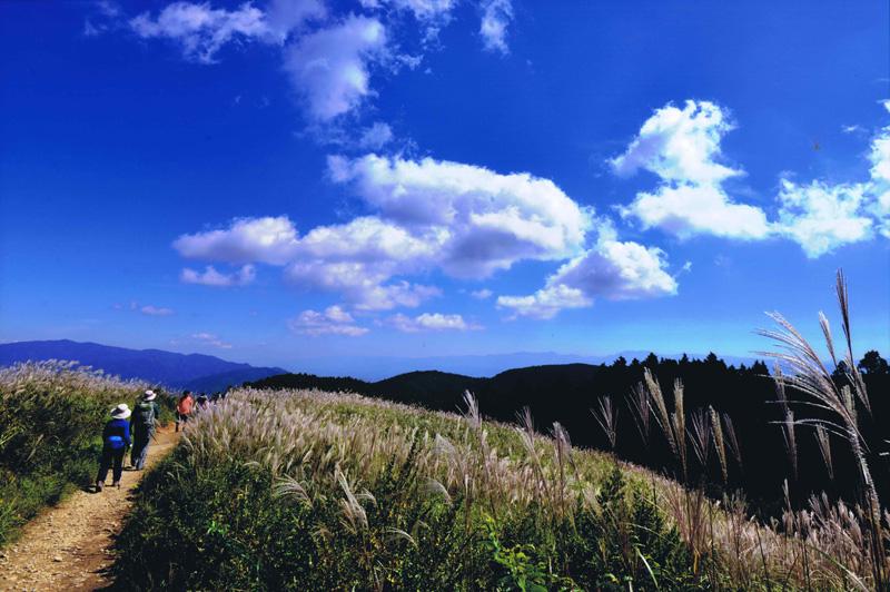 大阪府知事賞 「山を行く」岩湧山