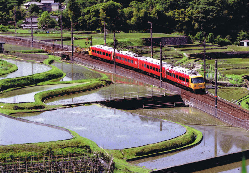 南海電気鉄道賞 「朝陽をあびて」岩瀬地区