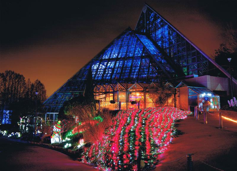 花の文化園賞 「夜の花園」花の文化園