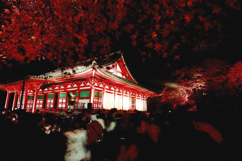 大阪観光局理事長賞 「光にさそわれて」観心寺