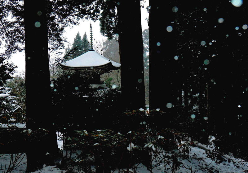 近畿日本鉄道株式会社賞 「小雪舞う古刹」岩湧寺