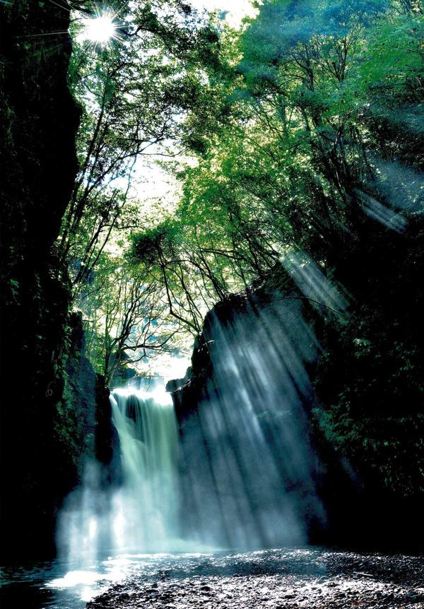 河内長野市長賞 「鮮烈 滝音と斜光のシンフォニー」 滝畑