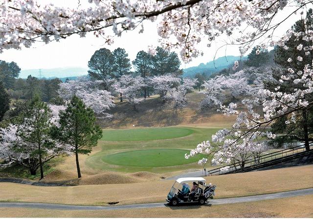 天野山カントリークラブ賞 「ゴルフ場の春」天野山カントリークラブ