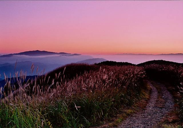 グランプリ カヤ場眺望岩湧山