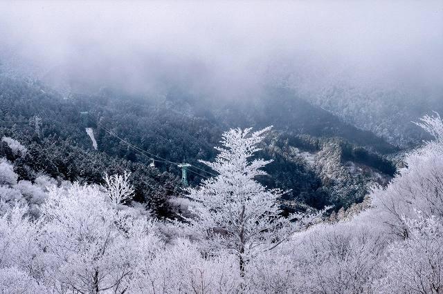 千早赤阪村議会議長賞 山頂に向かって金剛山 展望台