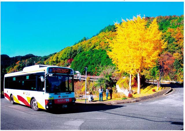 南海バス賞 秋景滝畑ダム周辺