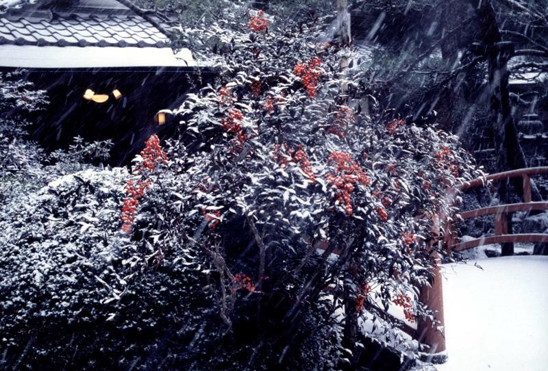南海電気鉄道賞 「温もりの燈」天見