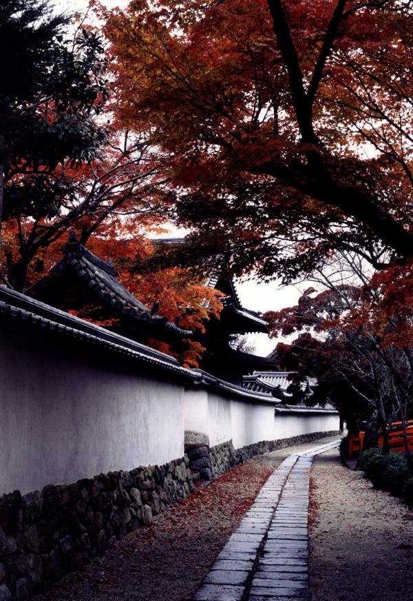 グルメ杵屋賞 「雨上りの参道」天野山金剛寺