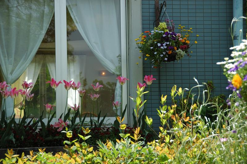 花の文化園フルル賞 「憩いの窓辺」花の文化園