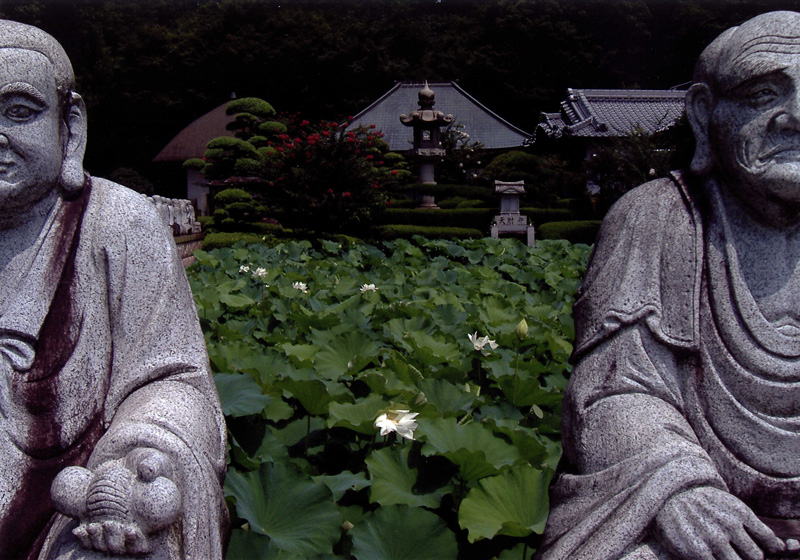 季節賞(夏) 「暑い日の思い出」興禅寺