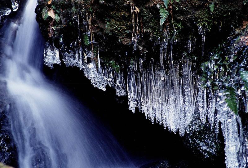 季節賞(冬) 「厳寒」滝畑ダムから大滝への林道にて