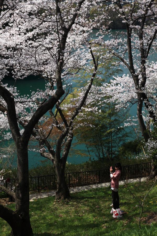 河内長野市公園緑化協会長賞 「春のひととき」寺ヶ池公園
