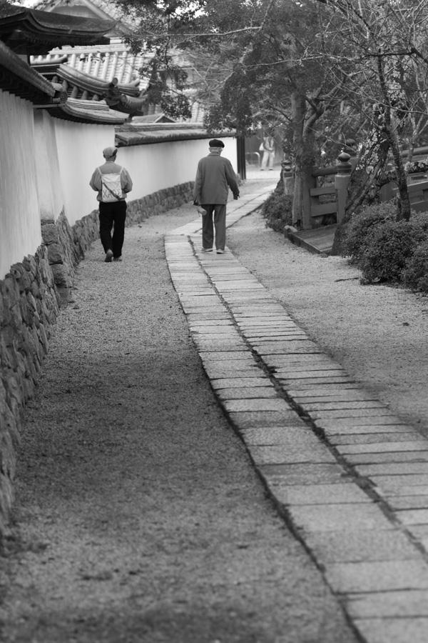 モノクロ賞 「背中」天野山金剛寺