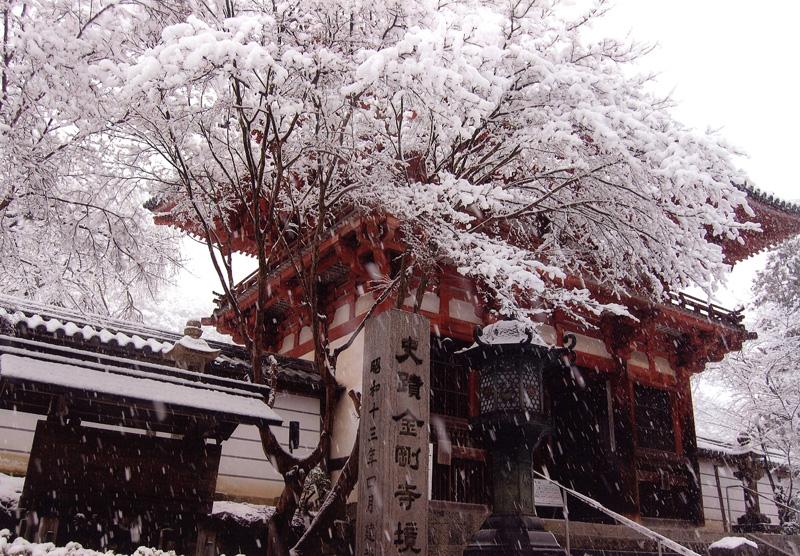 大阪府知事賞 「雪の花」天野山金剛寺