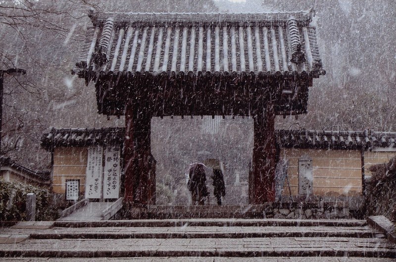 河内長野市議会議長賞 「俄か雪」観心寺