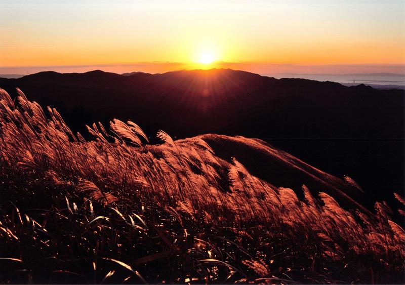 河内長野市観光協会長賞 「残照に映える」岩湧山頂
