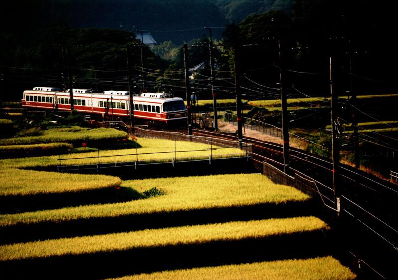 南海電気鉄道賞 「こうや号、初秋の中を行く」河内長野市岩瀬付近