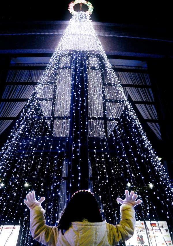 グルメ杵屋賞 「光のシャワー」ラブリーホール