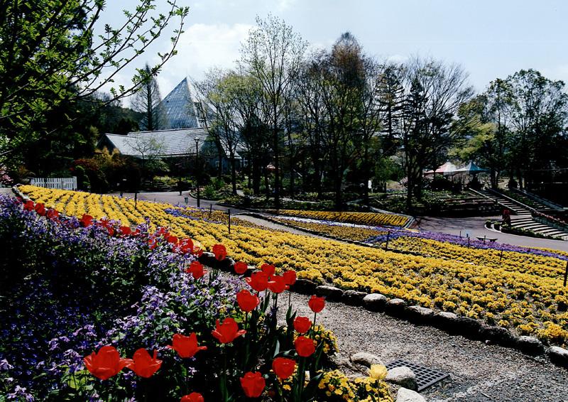 花の文化園賞 「春」花の文化園