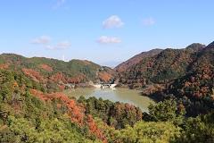 滝畑ダム・横谷渓谷周遊コース
