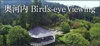 奥河内 Bird's-eye Viewing