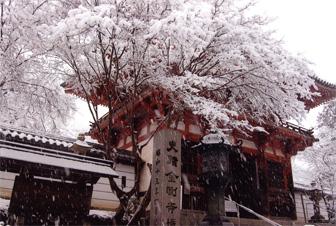 雪の金剛寺