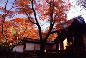 秋の延命寺門前