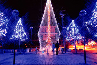 12月のイルミネーションライトアップ