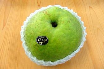 立派な梨です