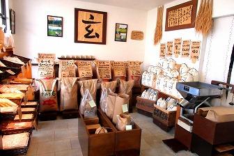 たくさんの種類のお米が売られています。
